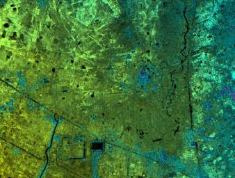 Radar Image with Color as Height, Lovea, Cambodia