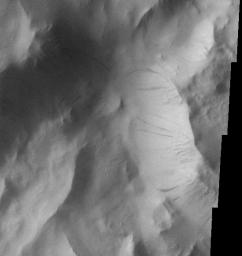 Lycus Sulci Dust Avalanches