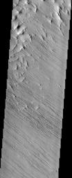 In this region of the Olympus Mons aureole, located to the southwest of the volcano, the surface has been eroded by the wind into linear landforms called yardangs, which can be seen in this image from NASA's Mars Odyssey spacecraft.