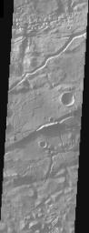 This image from NASA's Mars Odyssey shows the cratered highlands of Terra Cimmeria. The image contains several long troughs of Sirenum Fossae running primarily from left to right. These features are parallel to semi-parallel fractures called graben.
