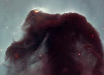 Rising from a sea of dust and gas like a giant seahorse, the Horsehead nebula is one of the most photographed objects in the sky. NASA's Hubble Space Telescope took a close-up look at this heavenly icon, revealing the cloud's intricate structure.
