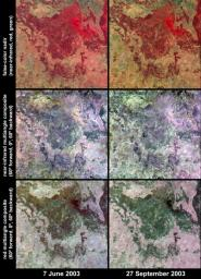 Austral winter and spring in Queensland's Brigalow Belt as seen by NASA's Terra spacecraft.
