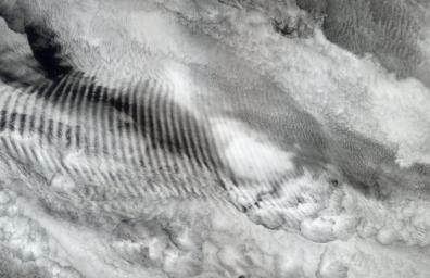 In this natural-color image from NASA's Terra spacecraft, a fingerprint-like gravity wave feature occurs over a deck of marine stratocumulus clouds.