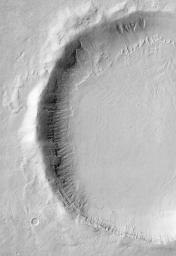 Gullies on Martian Crater (THEMIS)
