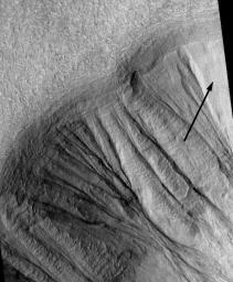 Gullies on Martian Crater (MOC)