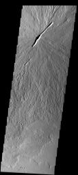 NASA's 2001 Mars Odyssey spacecraft imaged this low-relief shield volcano showing two large vents which have erupted several individual lava flows.