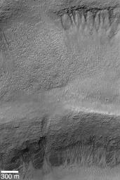 Gullies in Terraced Crater Wall