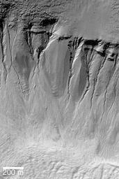 Gullies in Crater Wall