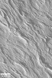 Flows on Olympus Mons