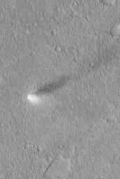 Summertime Dust Devil