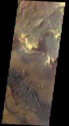 This spectacular view, taken by NASA's 2001 Mars Odyssey, shows the sunlit cliffs and basaltic sand dunes in southern Melas Chasma shows Mars in a way rarely seen: in full, realistic color.