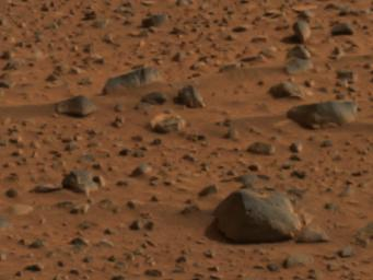 The smooth surfaces of angular and rounded rocks seen in this image of the martian terrain may have been polished by wind-blown debris. The picture was taken by the panoramic camera onboard NASA's Mars Exploration Rover Spirit.