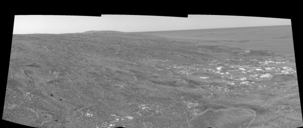Opportunity View on Sol 109 (left eye)