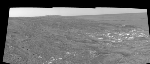 Opportunity View on Sol 109 (right eye)