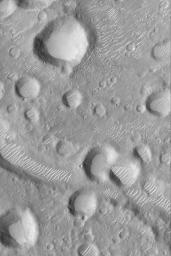 Amenthes Crater Cluster