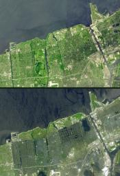 Seventeen days after Hurricane Katrina flooded New Orleans, much of the city was still under water. In this pair of images from NASA's Terra satellite, the affected areas can clearly be seen.