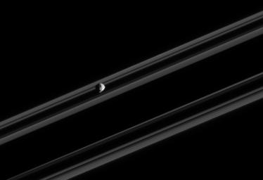 Saturn's small, irregularly-shaped moon Epimetheus orbits against the backdrop of the planet's rings, which are nearly edge-on in this view. The image was taken in visible light with NASA's Cassini spacecraft's narrow-angle camera on Feb. 18, 2005.