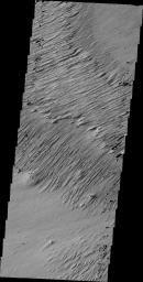 Ejecta Yardangs