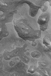 NASA's Mars Global Surveyor shows a strange ridged pattern developed in an eroding layer of material on the floor of a Labyrinthus Noctis depression in the Valles Marineris system on Mars.
