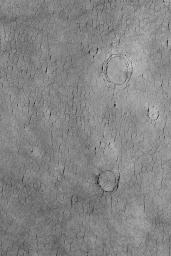 NASA's Mars Global Surveyor shows a cracked plain in western Utopia Planitia on Mars. The three circular crack patterns indicate the location of three buried meteor impact craters.