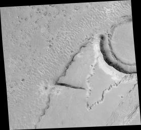 NASA's Mars Global Surveyor shows boulders in large ripples formed by an ancient catastrophic flood in Mars' Athabasca Vallis on Mars.