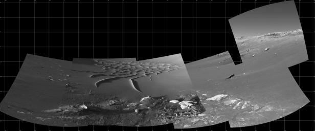 This mosaic from the navigation camera aboard NASA's Mars Exploration Rover Opportunity was compiled from images taken on the rover's 193rd and 194th sol on Mars on August 9 and 10, 2004.