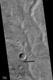 NASA's Mars Global Surveyor show a grouping of intricately-carved networks of branching valleys in Warrego Valles on Mars.