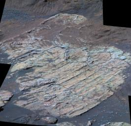 This false-color image taken by NASA's Mars Exploration Rover Opportunity shows a rock dubbed 'Escher' on the southwestern slopes of 'Endurance Crater' on Mars.