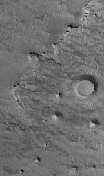 NASA's Mars Global Surveyor shows an eroded landscape occurring west of Sinus Meridiani on Mars. The bedrock at this location is buried beneath a mantle of dust, sand, and granules. Two circular mesas were once meteor impact craters.