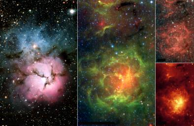 The Trifid Nebula is a giant star-forming cloud of gas and dust located 5,400 light-years away in the constellation Sagittarius, seen here by NASA's Spitzer Space Telescope.