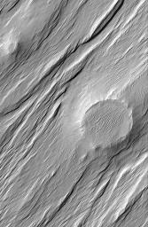 NASA's Mars Global Surveyor shows the expression of a formerly filled and buried meteor crater, locked within sedimentary materials eroded by wind in the Memnonia Sulci region of Mars.
