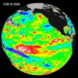 Recent sea-level height data from NASA's U.S./France Jason altimetric satellite during a 10-day cycle ending February 22, 2005, show that the central equatorial Pacific continues to exhibit an area of higher-than-normal sea surface heights.