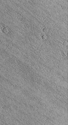 NASA's Mars Global Surveyor shows small wind-eroded ridges, known to geologists as yardangs, in the Eumenides Dorsum region of Mars.