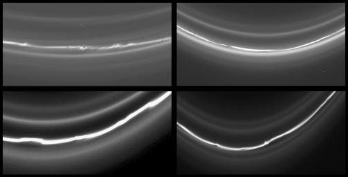 Four Views of the F Ring