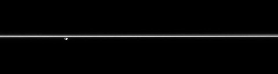 Gazing across the plains of Saturn's icy rings, NASA's Cassini spacecraft catches the F ring shepherd moon Pandora hovering in the distance.