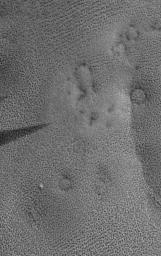 Martian Fingerprints