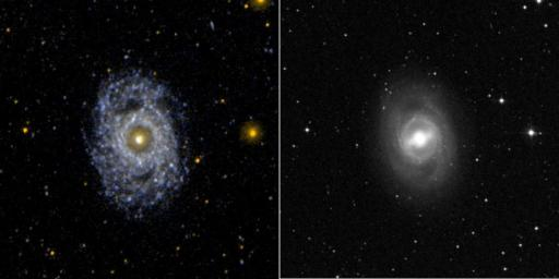 This ultraviolet image from NASA's Galaxy Evolution Explorer (left) and visual image (right) of the face on barred and ringed spiral galaxy NGC 3351 (M95).