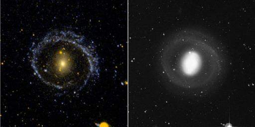 This ultraviolet image (left) and visual image (right) from NASA's Galaxy Evolution Explorer is of the barred ring galaxy NGC 1291. The VIS image is dominated by the inner disk and bar. The UV image is dominated by the low surface brightness outer arms.