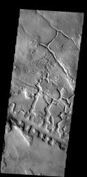 The line of box canyons in the middle of this image are part of a large region of collapse features called Galaxias Fossae