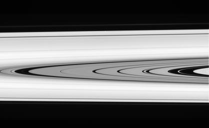 This splendid view offers a detailed look at the faint rings within the  Cassini Division as well as a rare glimpse of the Keeler gap moon,  Daphnis. The small, ring embedded moon is a bright unresolved speck above  center, near outer edge of A ring