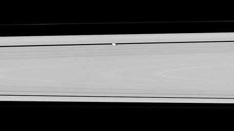 Hiding within the Encke gap is the small moon Pan, partly in shadow and party cut off by the outer A ring in this view. This image is from NASA's Cassini spacecraft.