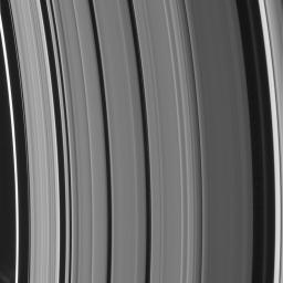 New Rings for Cassini's Division