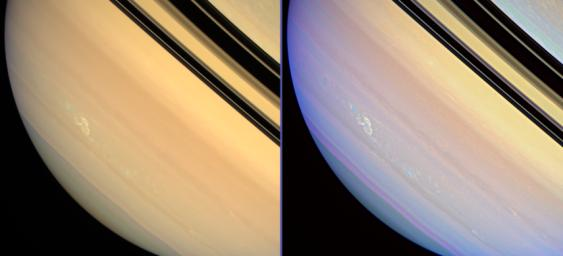 Saturn's Long-lived Storm