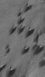 NASA's Mars Global Surveyor shows dark sand dunes in Arkhangelsky Crater on Mars. The steepest slopes on these dunes, their slip faces, point toward the northeast (upper right), indicating formative winds from the southwest.