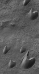 This image from NASA's Mars Global Surveyor shows dark sand dunes, with a thin coating of autumn frost, in the Ogygis Regio west of Argyre basin.