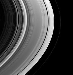 This view of the unlit side of Saturn's rings captures the small shepherd moon Pandora as it swings around the outside of the F ring. The F ring displays a few discrete bright clumps here