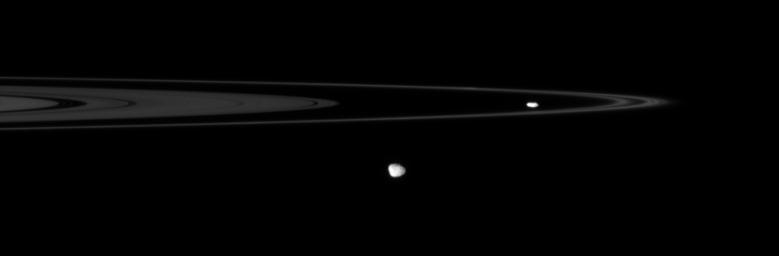 NASA's Cassini spacecraft spies two of the small, irregular moons that patrol the outer edges of Saturn's main rings.