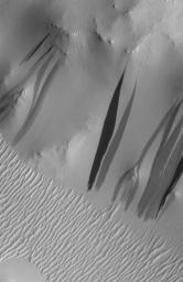 Why the New Gully Deposits are <i>Not</i> Dry Dust Slope Streaks