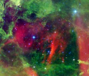 This infrared image from NASA's Spitzer Space Telescope shows the Rosette nebula, a pretty star-forming region more than 5,000 light-years away in the constellation Monoceros.