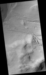 Gullies in Wirtz Crater
